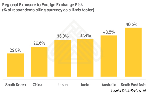 Regional Exposure to Foreign Exchange Risk