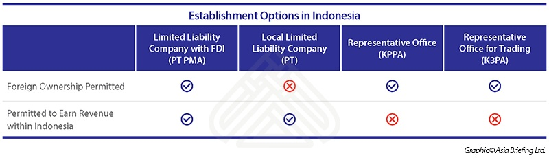 Options for Establishing an Enterprise in Indonesia