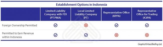 Options for Establishing an Enterprise in Indonesia