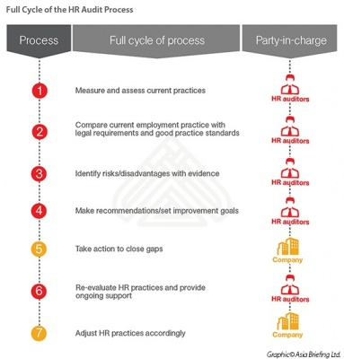 Full Cycle of the HR Audit Process